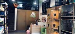 圣宠宠物(张家港店)盛大开业 送优惠