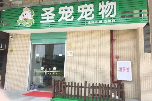 圣宠宠物西樵店开业送优惠|会员充值免